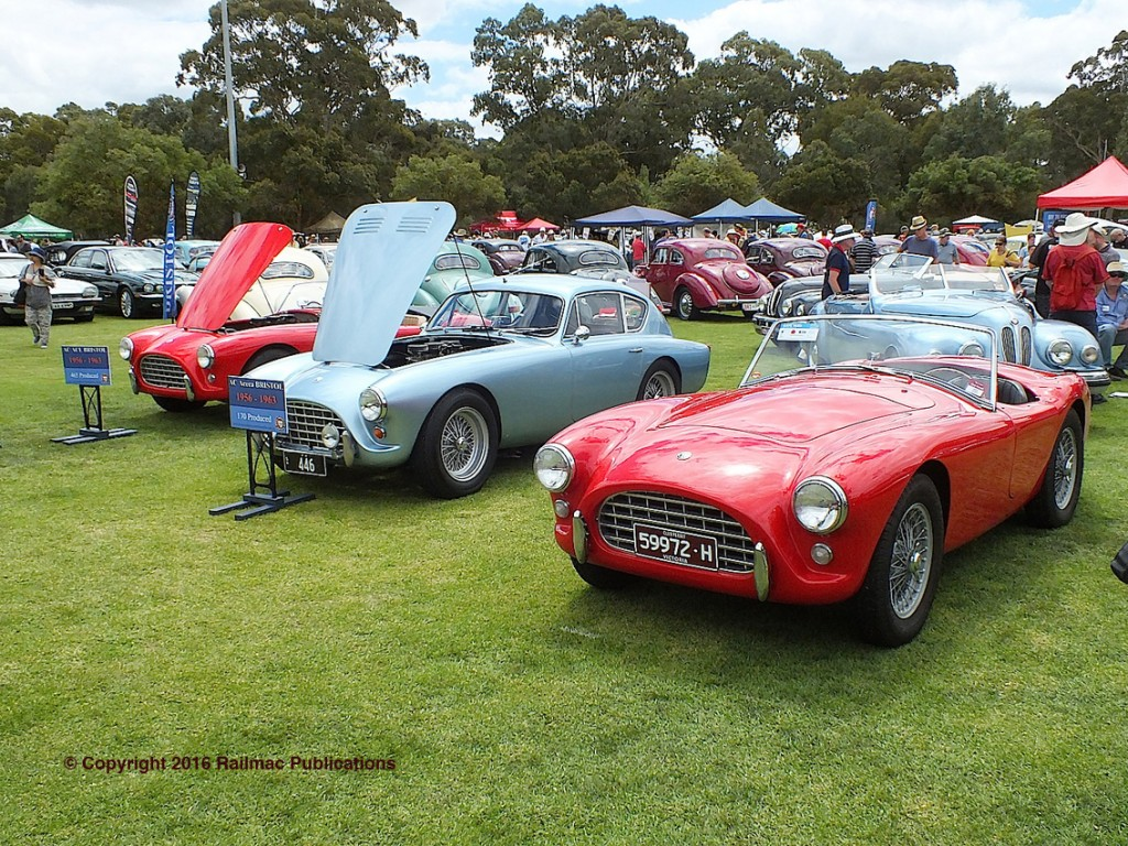 (SM 16-2-5616) Three AC ACE sports cars on display at the South Australian All British Day in February 2016.
